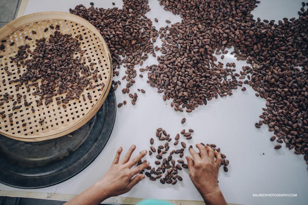 Valrhona Chocolates Bali